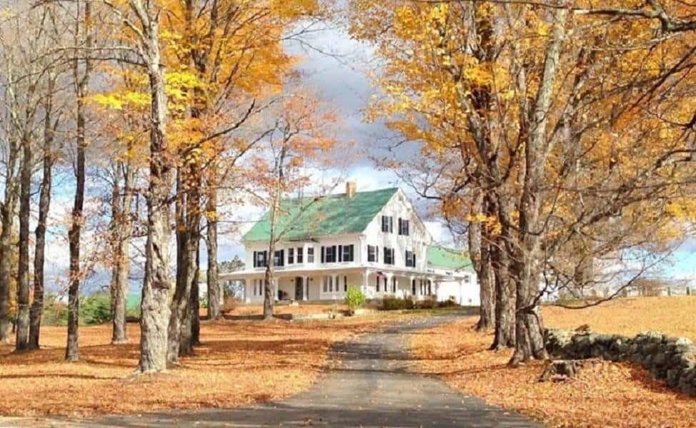 Maple Rock Farm